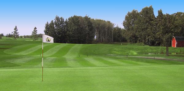 Pioneer Meadows Golf Course Logo